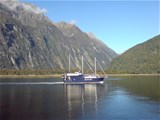 Full Day Milford Sound Coach/Nature Cruise/Coach